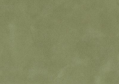 7134 Asparagus
