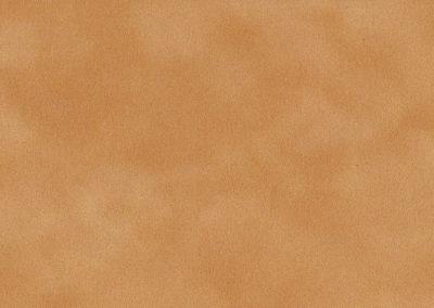 7184 Cinnamon