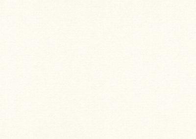 9804  Pure White