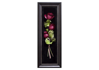 Preserved Roses in a Shadow Box
