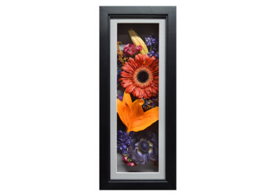 Preserved Flowers in a Modern Shadow Box Display