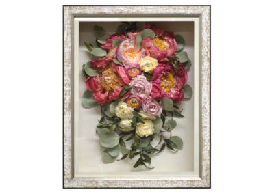 Preserved Pink Peonies in a Shadow Box