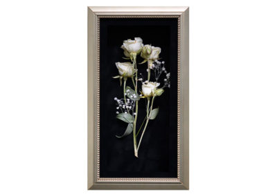Pavé Shadow Box w/ Preserved White Rose