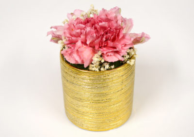 Mini Preserved Pink Carnation Flower Vase
