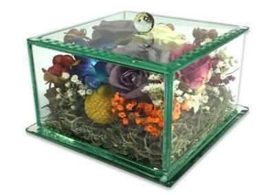 5x7 - Glass Encasement