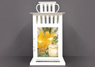 5x10 - Lantern