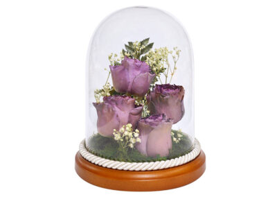 Preserved Roses in a Glass Dome