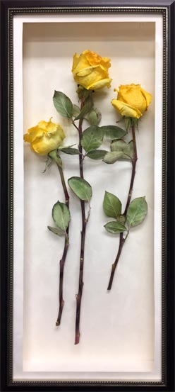 Preserve your funeral flowers into a timeless memorial keepsake.